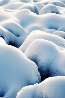 Erotic Snowfield V by Thomas Schaefer