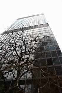 The Aviva Tower & The Gherkin von Ioana Epure