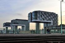 Kranhäuser, Köln von shark24
