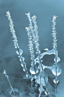 Eistropfen by Michael Schickert