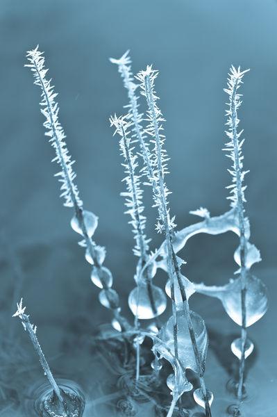 Eistropfen