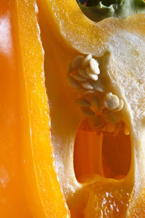 Orange Bell Pepper by Glori Berkel