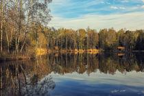 'Uferlandschaft mit Holzhütte am Moorsee im Pfrunger-Burgweiler Ried' von Christine Horn