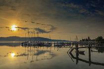 'Steg in Bodman-Ludwigshafen mit ankernden Booten - Bodensee' von Christine Horn