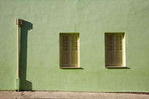 windows by alessia