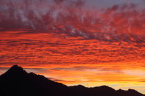 Sunset Queenstown von Roland Spiegler