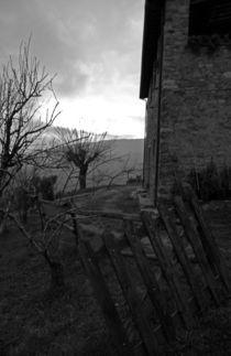 Umbria Fog von Julian Raphael Prante