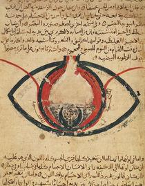 Anatomy of the Eye von Al-Mutadibi