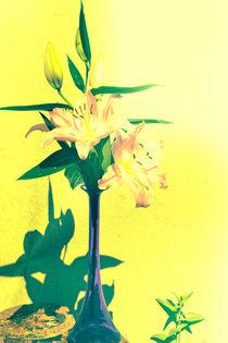 Blüten abstrakt von Claudia Evans