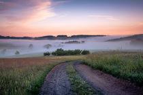 Odenwälder Landschaft im Morgennebel von Yvonne Albe