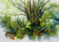 Weide und Wildnis von Helen Lundquist