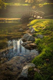 Romantische Szene mit japanischer Brücke von Yvonne Albe