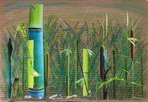 Bambus zart und stark von Doreen Trittel