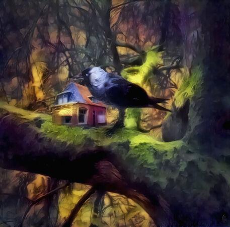 Vogelhaus-klein