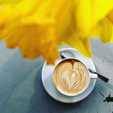 Kaffee-cappuccino-doreen-trittel00004