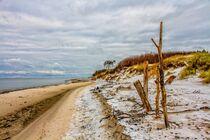 Winterlandschaft am Darßer Weststrand by Holger Felix