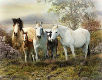 Connemara Ireland by Trudi Simmonds
