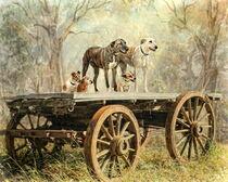 Country Dogs von Trudi Simmonds