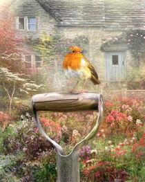 Robin Redbreast von Trudi Simmonds