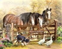 Featherwell Farm von Trudi Simmonds