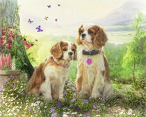 Cute Cavaliers by Trudi Simmonds