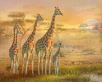 Giraffe Family von Trudi Simmonds