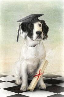Graduation Day von Trudi Simmonds