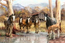 High Country Hideaway von Trudi Simmonds