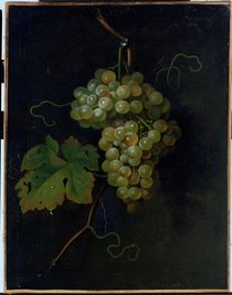 Grapes  von Tobias Stranover