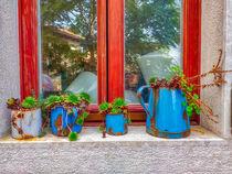 Fensterbank mit Dachwurzen von Heike Loos