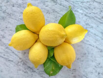 Zitronen by Heike Loos