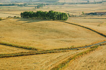 Landscape, Italy (Sardinia) by whiterabbitphoto
