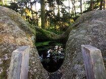 Wasserstein by Xenia Wilk