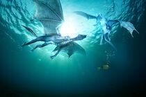 Two dragons fight underwater von Sven Bachström