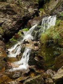 Riesloch Rißloch im Bayerischen Wald, Deutschland 3 von dresdner