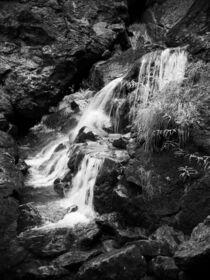 Riesloch Rißloch im Bayerischen Wald, Deutschland 9 von dresdner