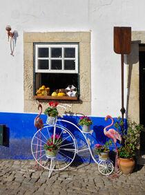 Dekoration mit Hochrad und Flamingos vor einer blau weißen Hauswand von Berthold Werner
