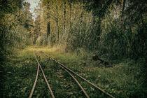'Schienen und Stellwerk für die Torfbahn in Bad Wurzach - Allgäu' von Christine Horn