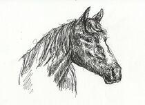 Pferd von Kai Rohde