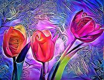 Drei Tulpen von Angelika  Schütgens