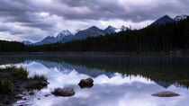 Herbert Lake, Banff Nationalpark, Kanada by alfotokunst