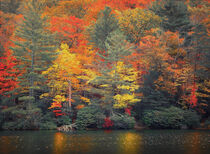 Fall in Blue Ridge Mountains by William Schmid