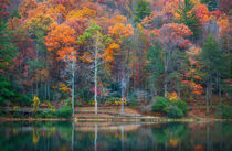 Fall in Georgia by William Schmid