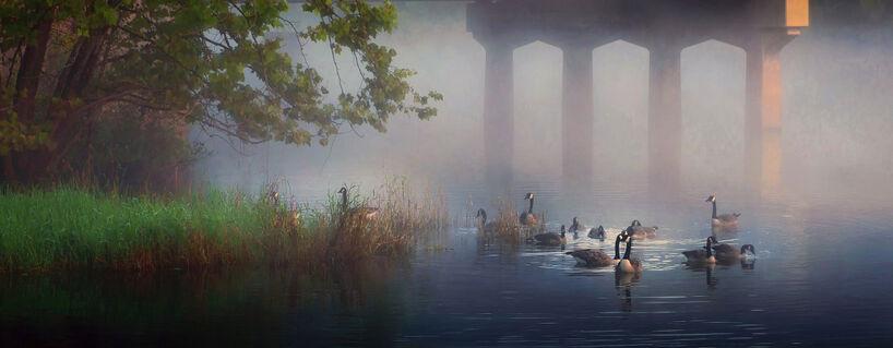 Geese-under-the-bridge-40-van-gogh-end