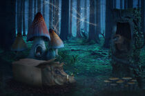 Mystical Forest by AD DESIGN Photo + PhotoArt