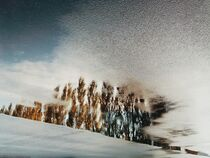 Reflection by Andrei Grigorev