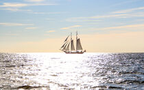 Segelschiff Eldorado  von Tim Trzoska
