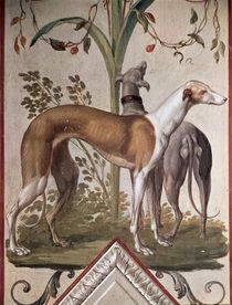 Two Greyhounds  by Pietro Rotati