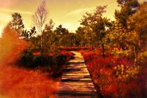 Rotes Moor von Claudia Evans