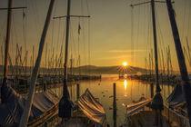 Sonnenaufgang im Jachthafen von Bodman im September - Bodensee by Christine Horn